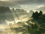যাকাত সম্পর্কিত বিবিধ মাসায়েল