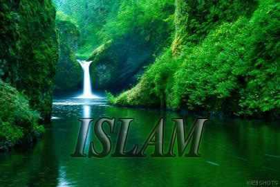 মুসলিম রোগী দেখে মার্কিন ডাক্তার অরিভিয়ার ইসলাম গ্রহণ