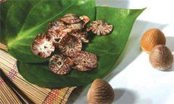 এশিয়ার গোপন প্রাণঘাতী মাদক সুপারি