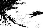 তায়েফের পথে আলোর পথিক