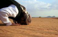 শরী'আত সম্পর্কে মূর্খ ও অজ্ঞ লোকদের আমল আল্লাহর নিকটে গ্রহণযোগ্য হয় কি?