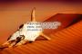 কীভাবে আল্লাহ একে আবার জীবিত করবেন, যেখানে কিনা তা মৃত? — আল-বাক্বারাহ ২৫৯-২৬০
