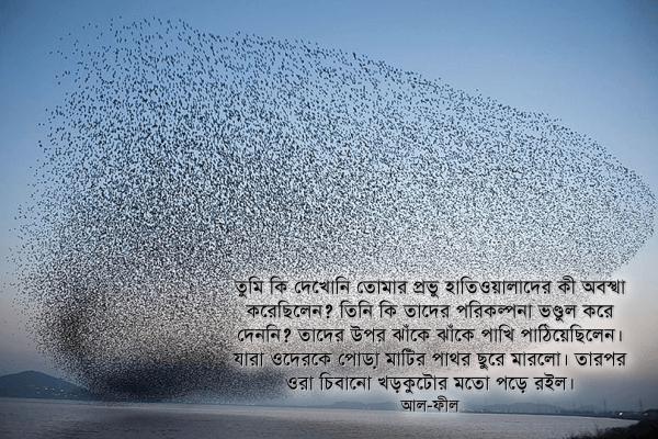 তুমি কি দেখোনি তোমার প্রভু হাতিওয়ালাদের কী অবস্থা করেছিলেন? —আল-ফীল